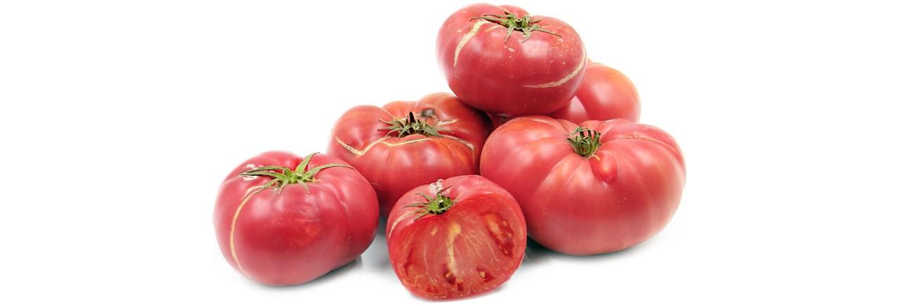 Tomato  (51)