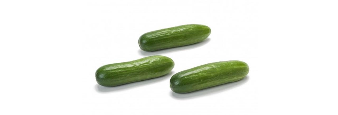 Cucumber (1)