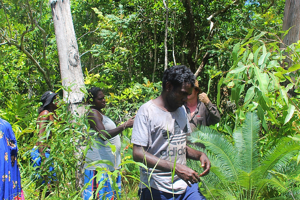 inspecting edge of spring fed rainforest at knowledge water source