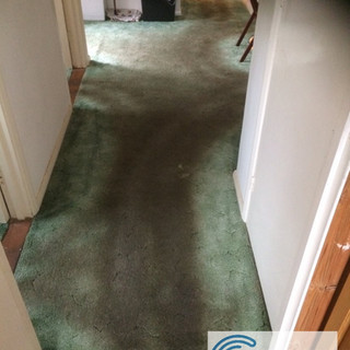 Residential Clean