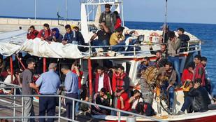 Πολιτικοί Πρόσφυγες, Ρατσισμός και Πράσινα Άλογα