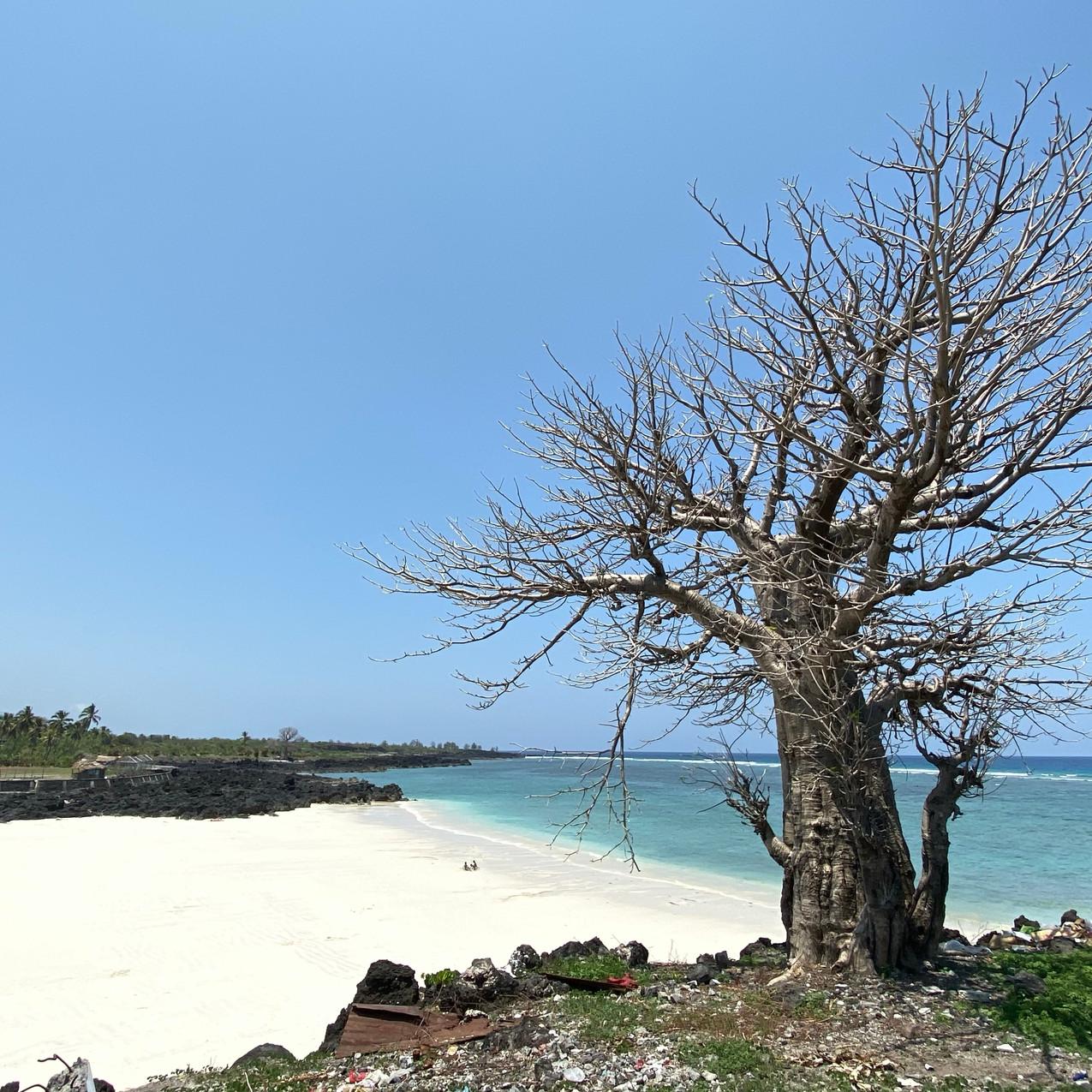 Chomoni Beach