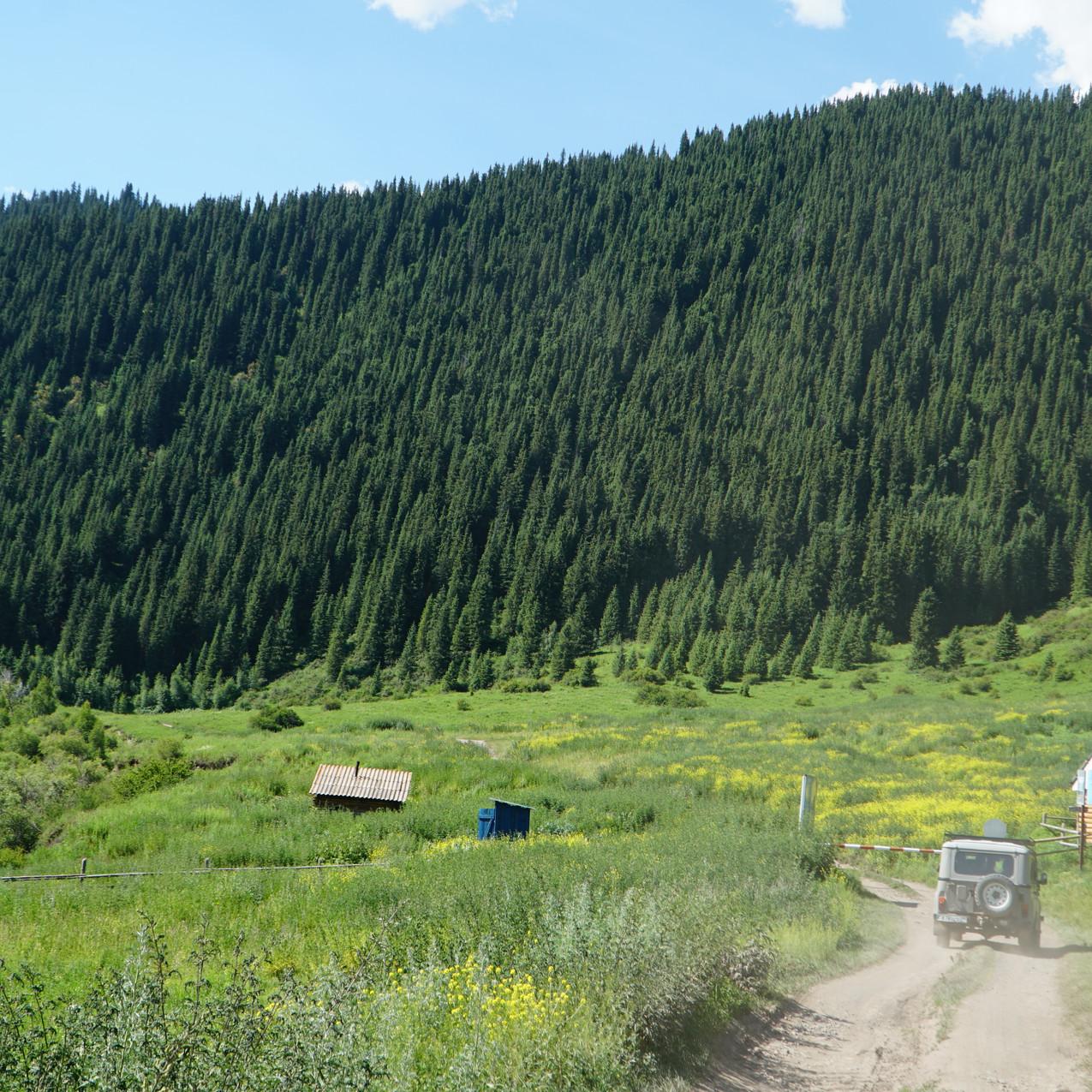 Kaindy Landscape