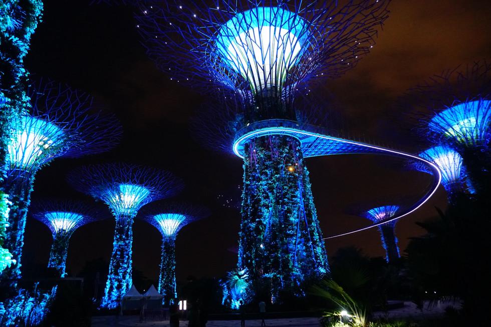 Singapore - Top Tips