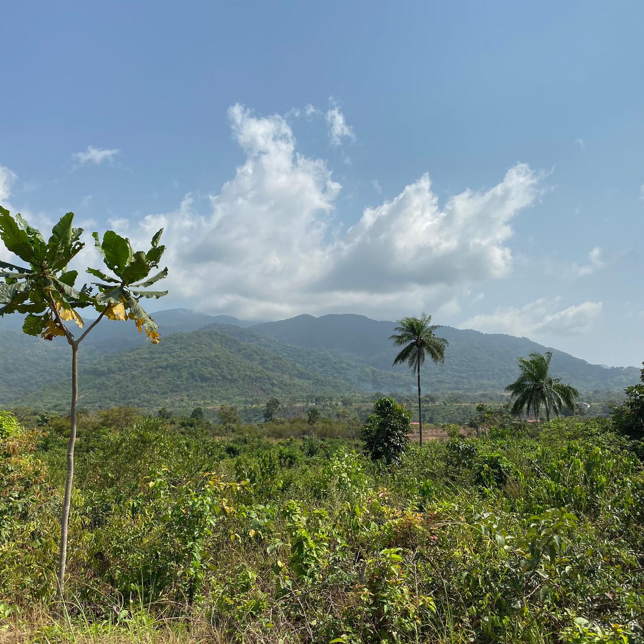 Freetown Peninsula