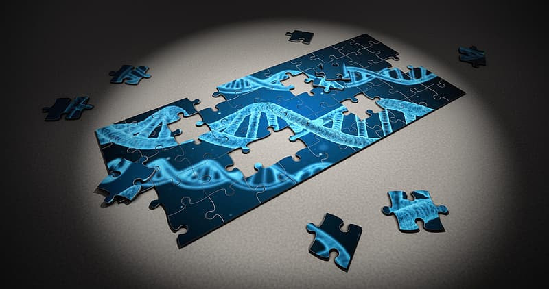 Blue jigsaw puzzle depicting a strand of DNA.