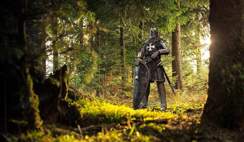 Knight standing in a green wood