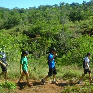 1ª Caminhada Ecológic