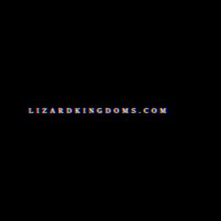 Lizard Kingdom Tour Promo