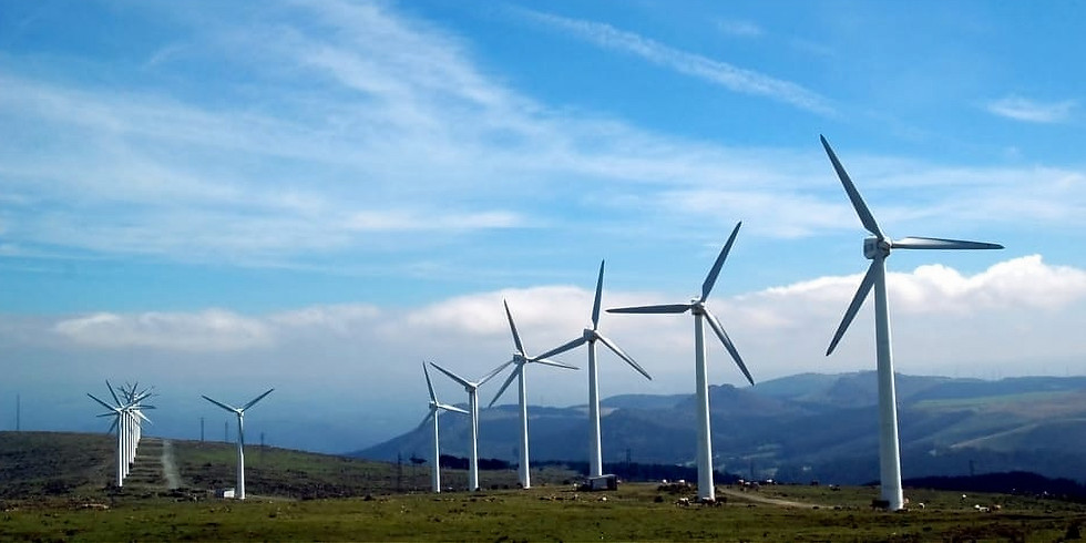 Opportunities in the Field of Wind Energy