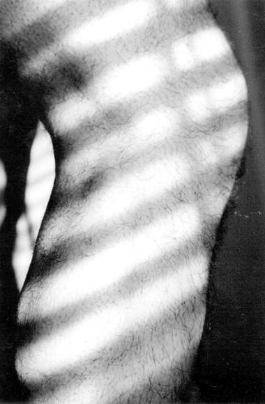Body (Leg with light)