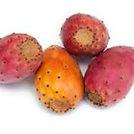 prickly-pear-oil.jpeg