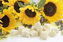 Sunflower Wax 1.jpg