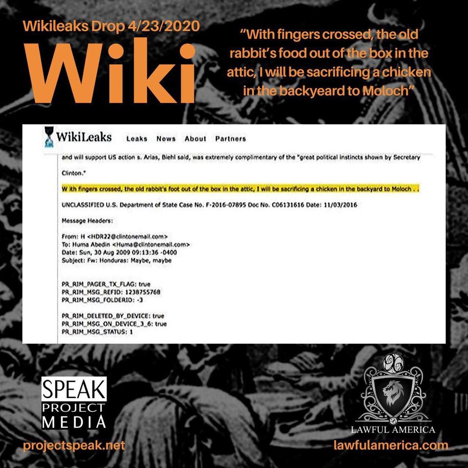 Wikileaks Drop 4-23-20.jpg