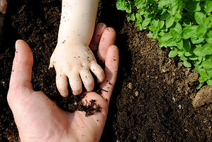father and daughter hands play with soil