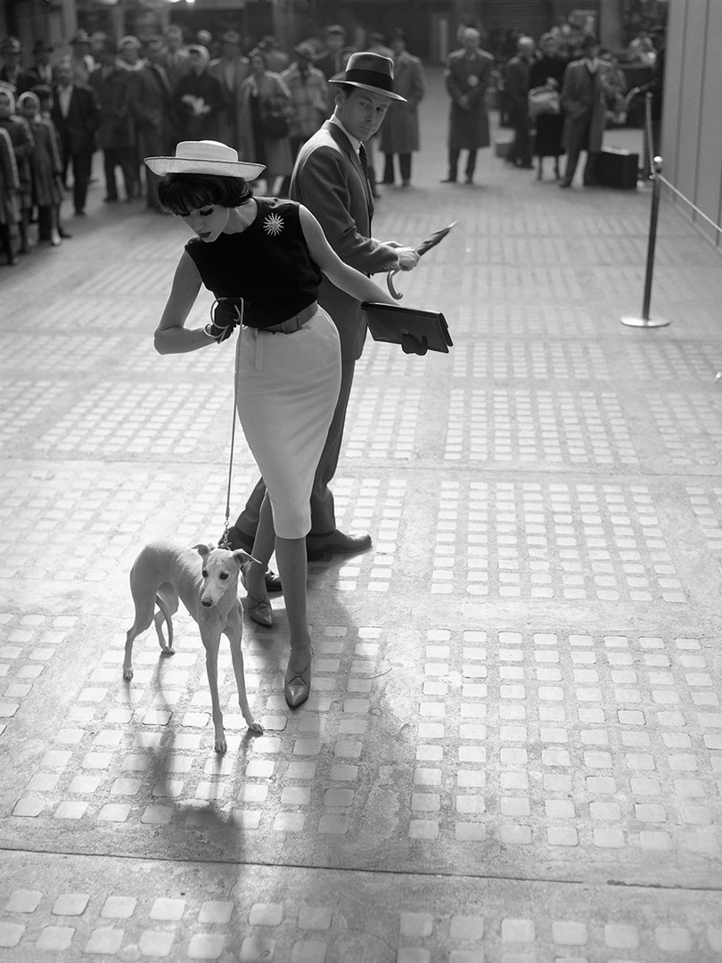 Simone D'Aillencourt Whippet with Ward Purdy