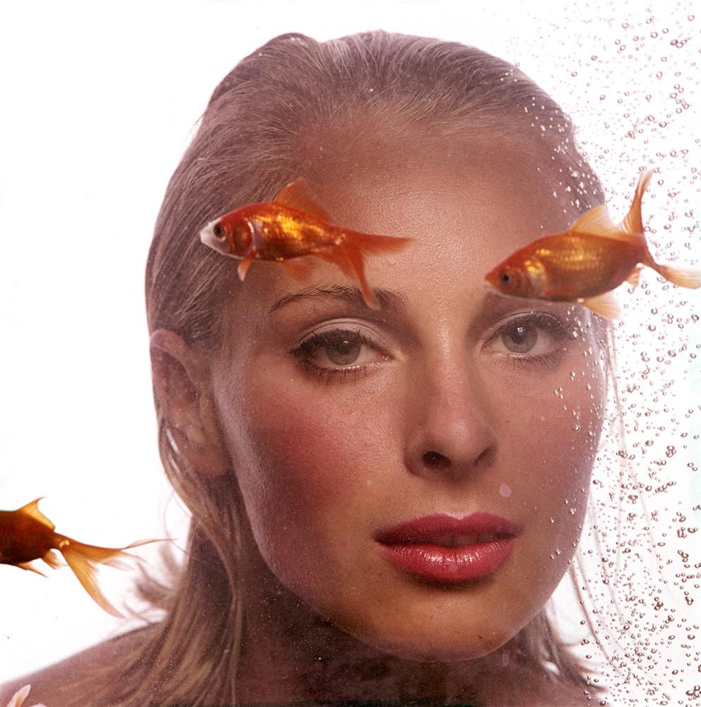 Goldfish Camilla Sparv 1965.jpg
