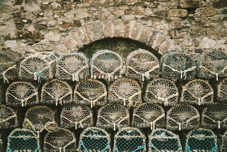 Lobster Cages