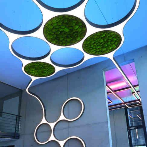 Custom Lighting with Moss