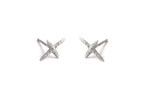 Star X Silver