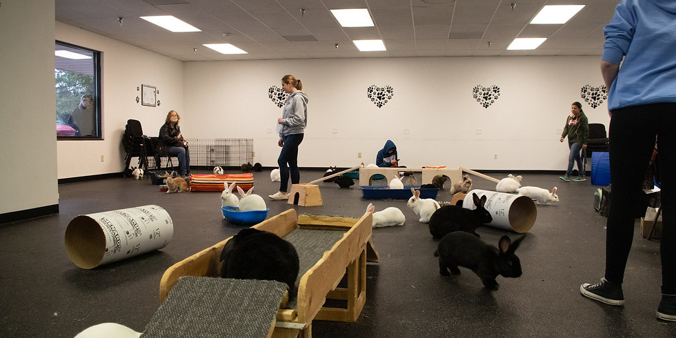 RRMN Romp & Spa/Nail Trim Event - Wednesday