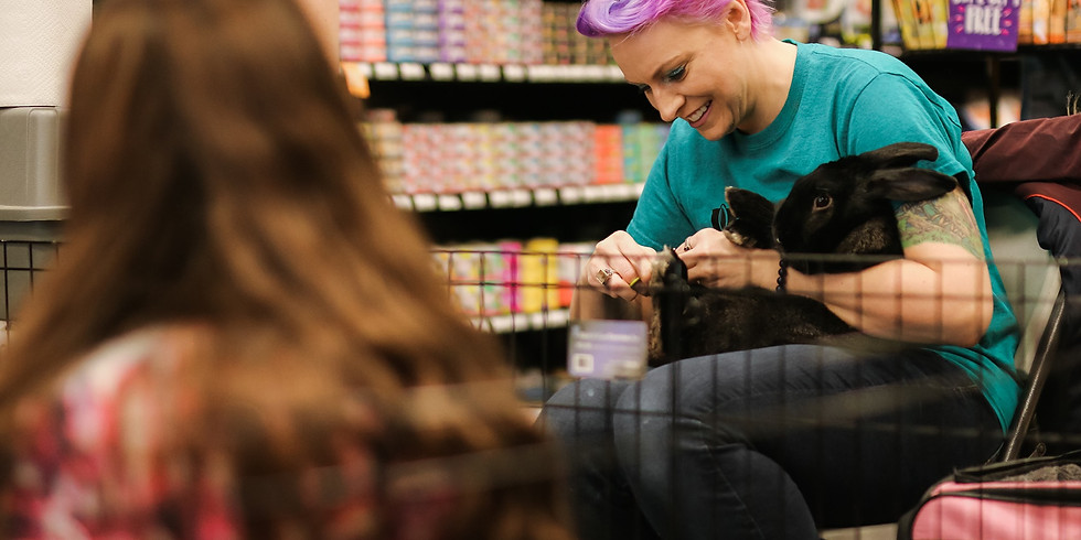 Bunny Meet & Greet with Nail Trims - Maple Grove, MN