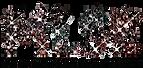 MLSE-logo.png