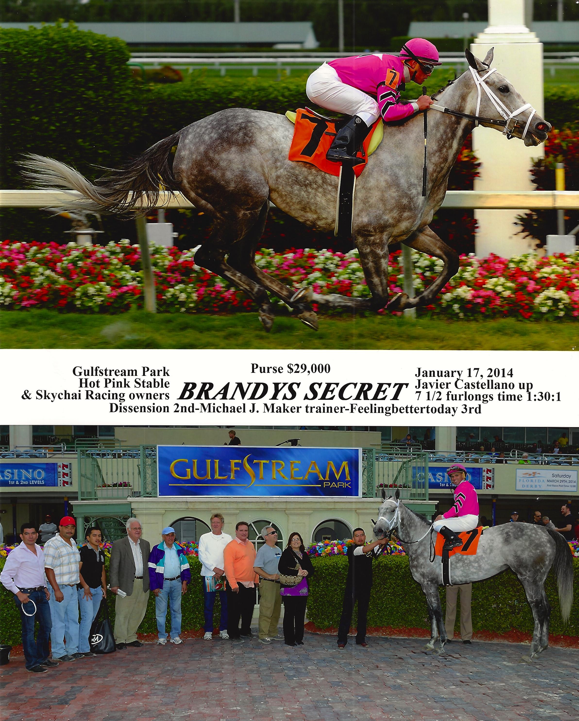 Brandys Secret