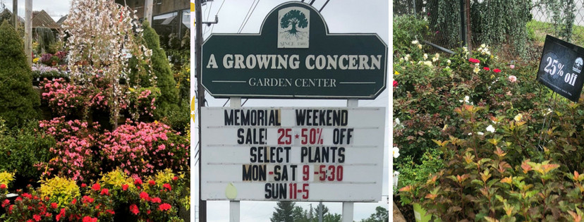 Hendersonville Garden Party Sale