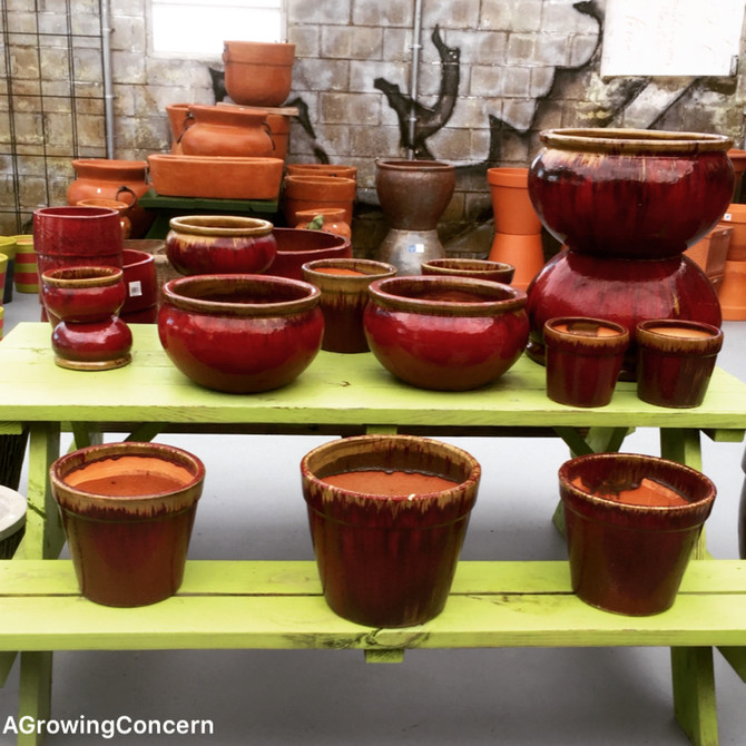 Vibrant, colorful pottery!