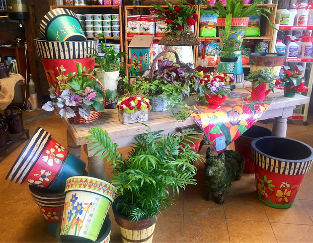 Pottery at A Growing Concern Garden Center in Hendersonville