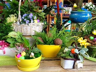Colorful garden baskets at A Growing Concern garden center, Hendersonville