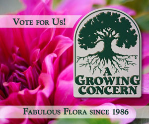 Please Vote for A Growing Concern in the Best Garden Center and Best Green Business Categories