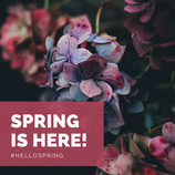 Happy First Day of Spring!!!