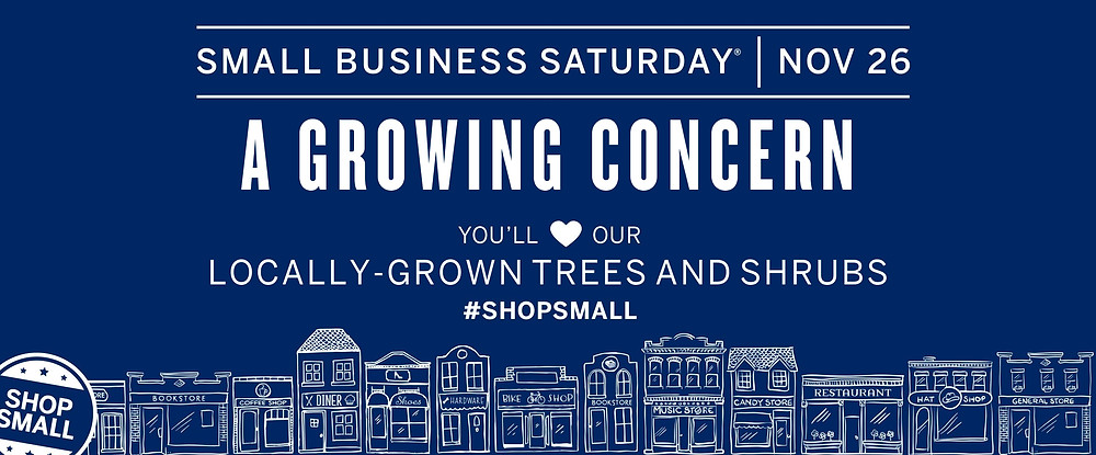 #ShopSmall in Hendersonville, NC