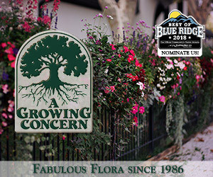 Nomination A Growing Concern for Best Garden Center in the Times-News Best of Blue Ridge
