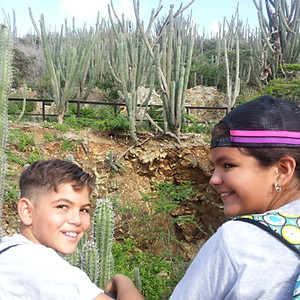 Excursion Parke Arikok
