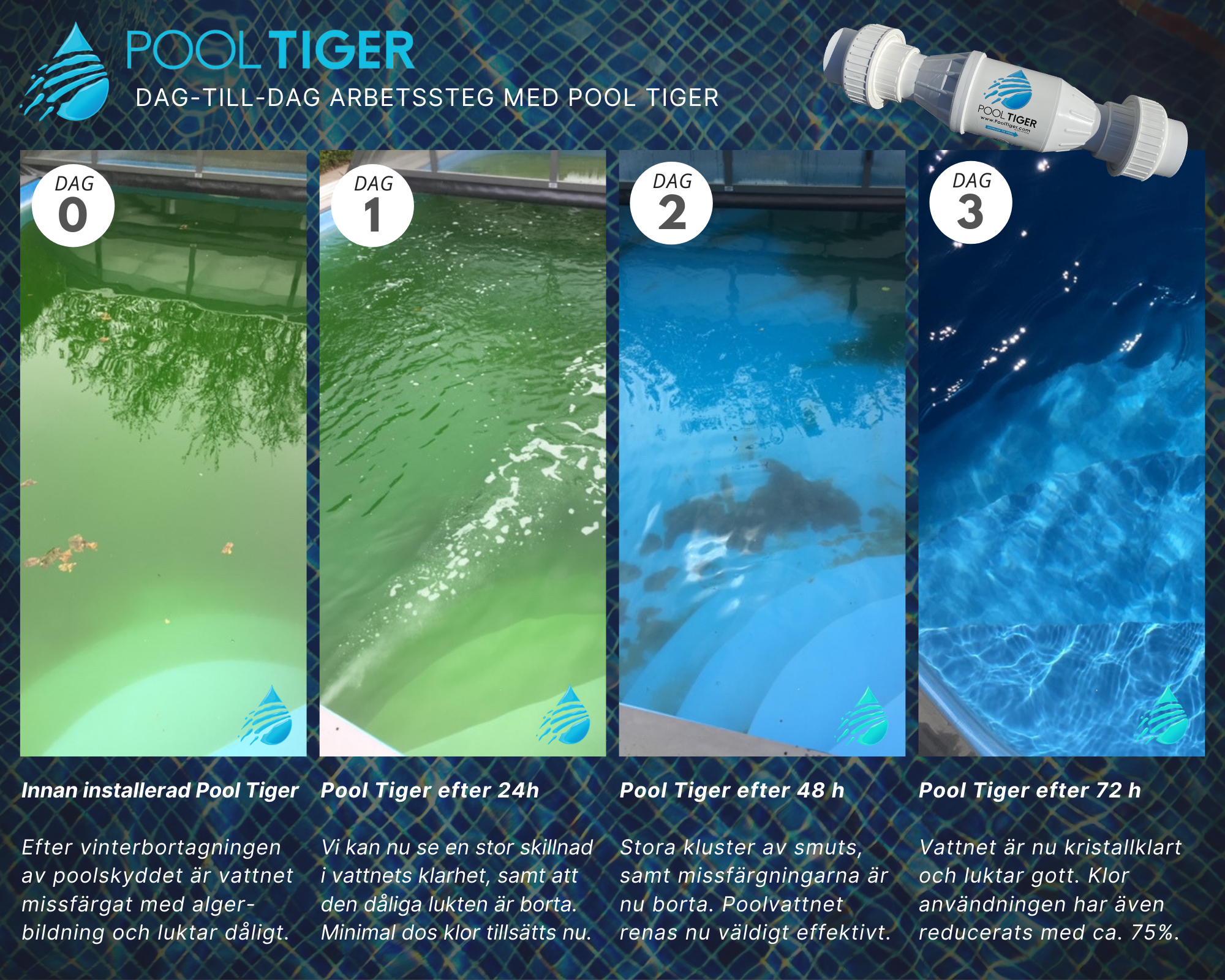 Pool Tiger 72h test