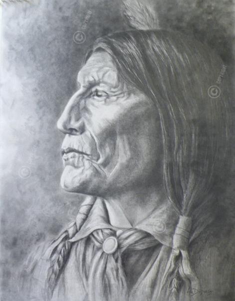 Chef indien Wolfe Robe