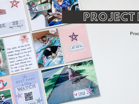 Project Life Process   Week 32