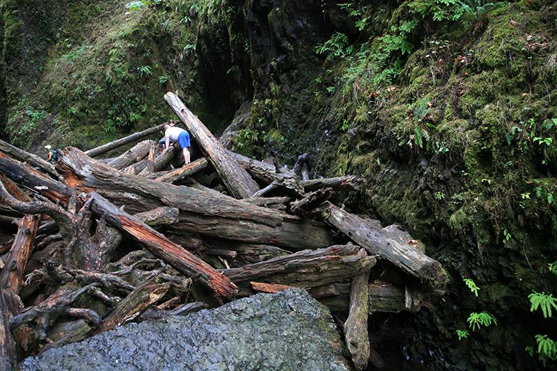 Oregon 콜롬비아 고지 Oneonta falls