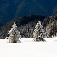 허리케인 릿지 겨울풍경