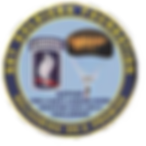 173d Airborne Brigade Foundation.png