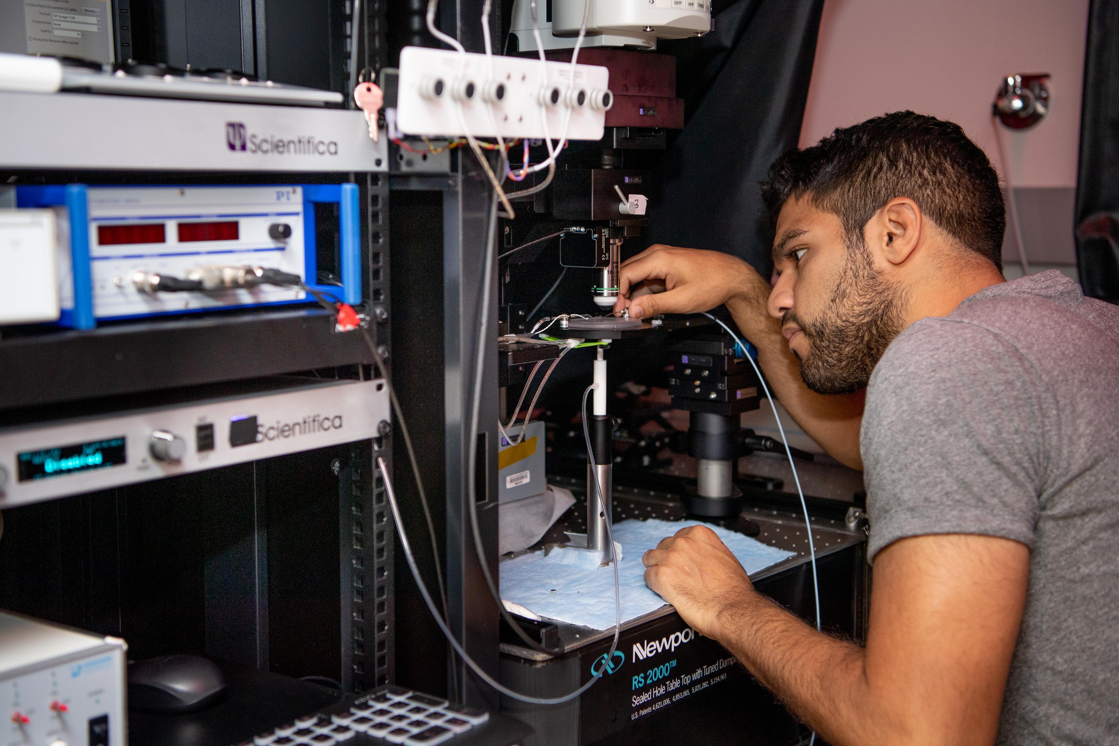 Apparatus for in vivo imaging in beh