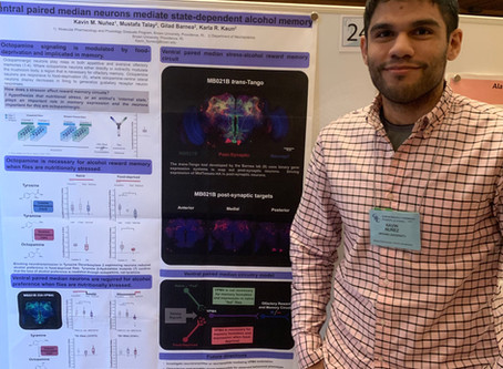 Kavin presents at 2019 Neuromodulatory Mechanisms GRC
