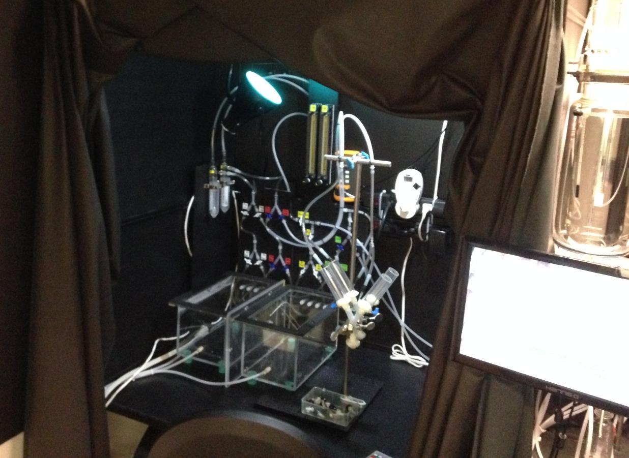 Conditioning apparatus