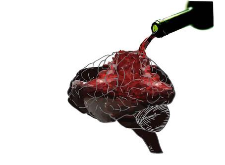 New neural circuits publication!
