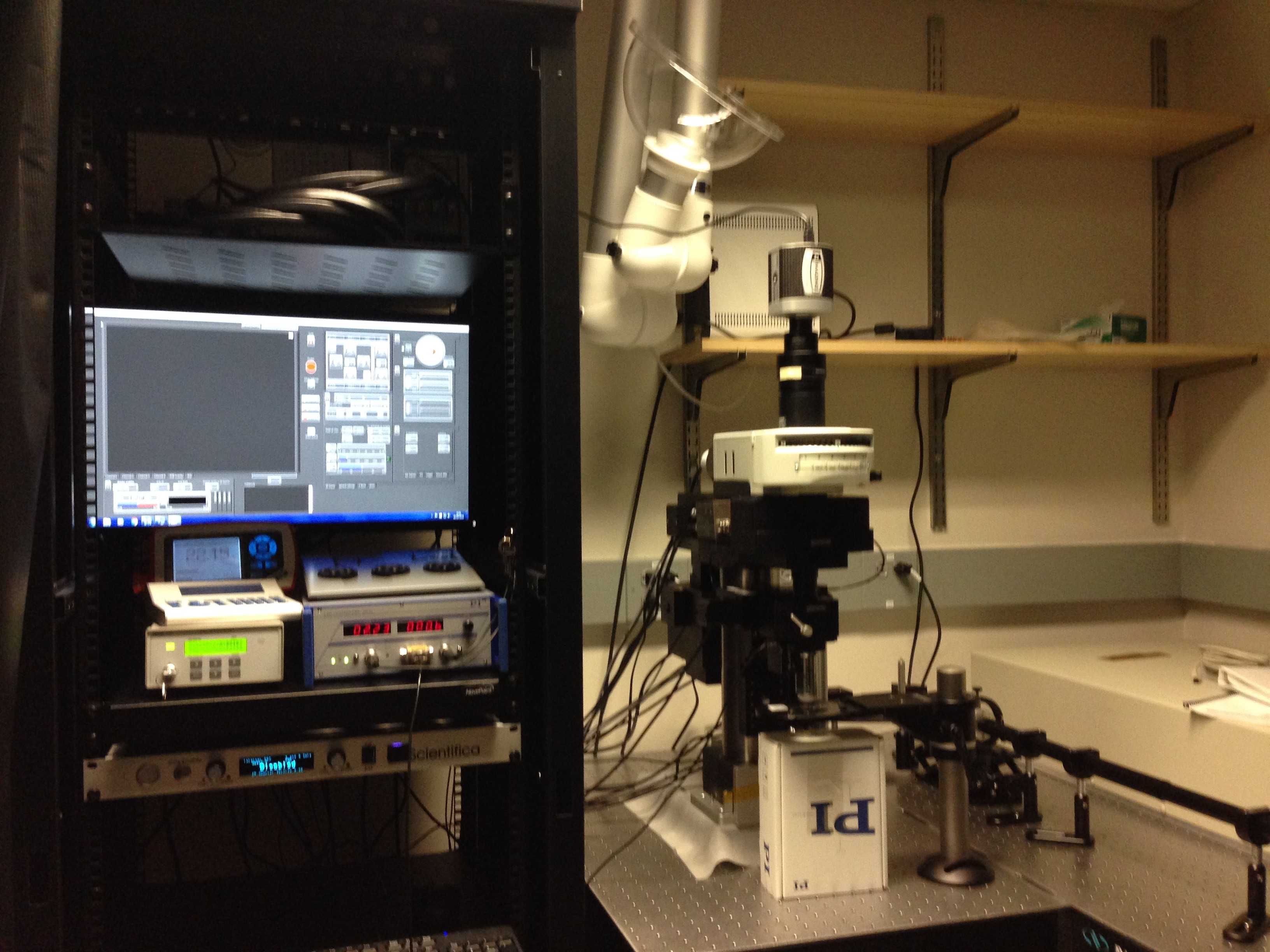Two-photon microscope 1