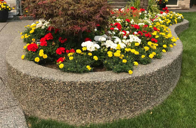concrete-exposed-aggregate-planter-2.jpg