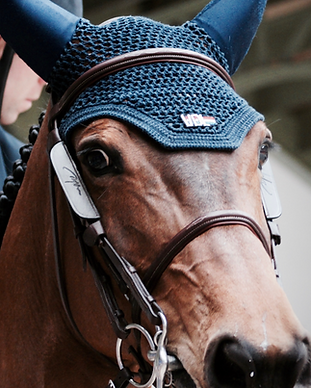 Horseback%20Riding_edited.png